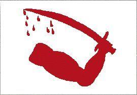Dimmits Goliad Flag Texas Revolution Banner Dimmitt War Pennant 3x5