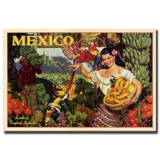 Global Mexico, Traditional Canvas Art   32 x 24   V7066 C2432GG