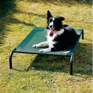 Coolaroo Elevated Indoor/Outdoor Pet Cot for Medium Breeds