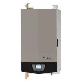 Rheem Professional Universal 100 Gallon 199 BTU Commercial Water