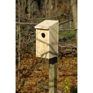 Heartwood Flicker Bird House