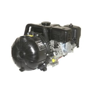 Pacer Pumps 2, 150 GPM EconoAg Water Pump with 4 HP Briggs & Stratton