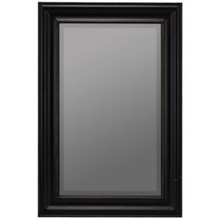 Cooper Classics Wellsley Wall Mirror in Black