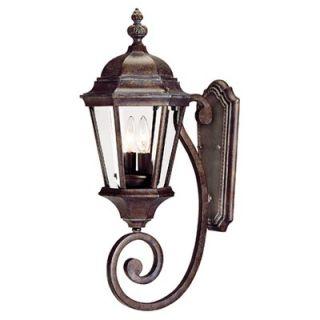 Savoy House Wakefield Outdoor Wall Lantern in Walnut Patina