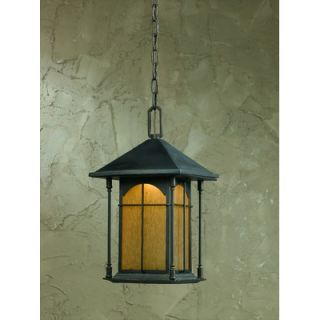 Triarch Lighting One Light Outdoor Pendant in Oil Rubbed Bronze