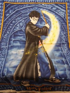Harry Potter Quilt Top Fabric Panel 2001 Retired New