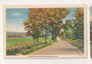 Greetings from Greenwood Lake USA Vintage Postcard 0334