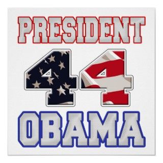 You cast your vote, and Barack Obama is now the 44th president of the