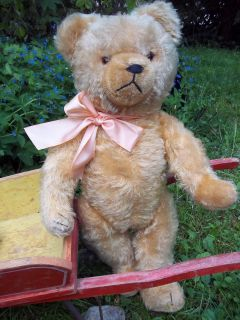 This is a marvelous antique HERMANN Teddy Bear in very good condition