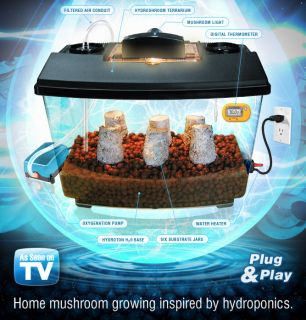 Hydroponic Mushroom Growing Home Kit Beginners Chefs Grow Pounds Like