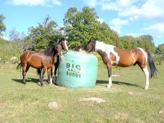 Big Bale Buddy Size XLarge Feed Hay Horses Equine Round Bale Feeder