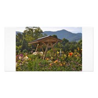 Nature Scene Photo Card