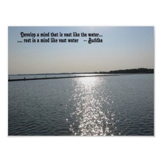 mindfulness buddha quote water chesapeake bay photo