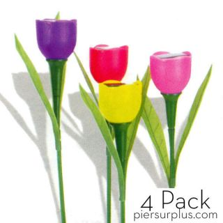 Hollander Solar Tulip Lights Landscape Ornament Pack of Four Colors