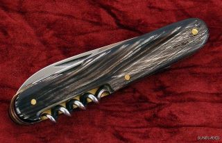 Hubertus Knife Buffalo Horn Folding Hunting German Hobo Picnic Fork