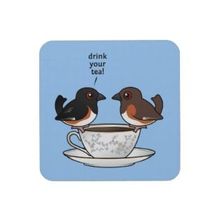 Cute Song Sparrow, Bird, Garden, Animal Nature Beverage Coasters