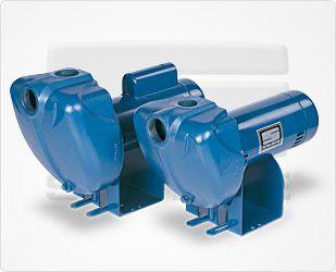 Sta Rite Irrigation Pump 11 2HP DS3HF