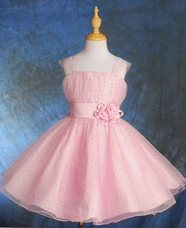 Pink Wedding Flower Girl Pageant Party Occasion Dresses Size Size 11