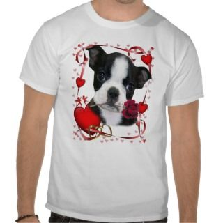 Boston Terrier with Rose Tee Shirt