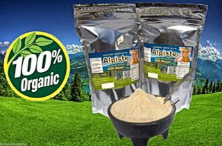 Canary Seed Milk Powder Leche de Alpiste En Polvo Dietary Supplement