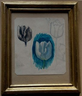 Ludvig Find Watercolor Sketch with Tulips Framed