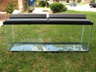 55 gallon undergravel fish tank aquarium filter 48x12 for Hexagon fish tank lid