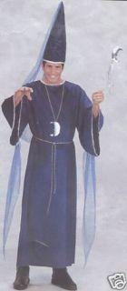Renaissance Wizard Merlin Magician Sorcerer Costume LRG