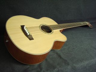 Michael Kelly Firefly 5 string Acoustic Bass Guitar Nostalgia w
