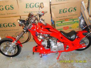 Built BUDWEISER MINI CHOPPER MOTORCYCLE 124cc 4cycle 4speed Auto