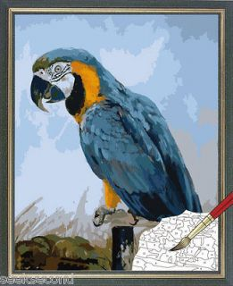 Unstretched Paint by Number kit 50x40cm (20x16) Parrot Home Deco