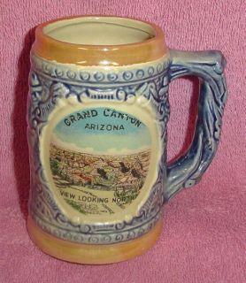 Grand Canyon Arizona Collectible Souvenier Glass Beer Stein Mug