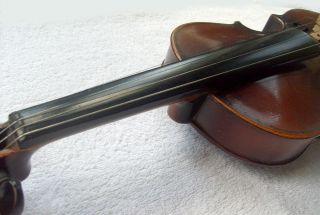 antonio stradivarius