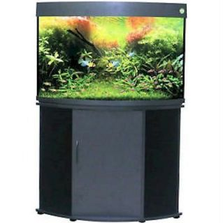 Compass Rose 50 Gallon Corner Aquarium   Without Aquarium Kit