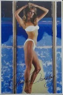 Christie Brinkley 22x33 Sexy White Bikini Poster