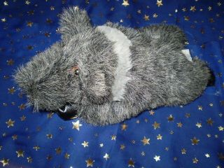 Resort Gifts Unlimited Arizona Plush Gray Pig Boar 13