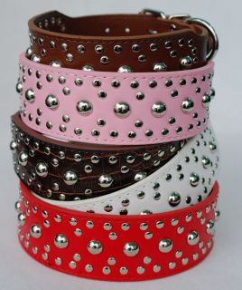 Style 2 wide Studded Leather Dog Collars for more breeds XL L M S XS