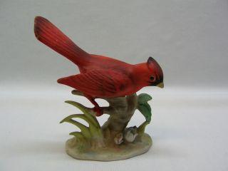 cardinal bird porcelain figurine napco japan B2790