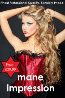 Clip in Hair Extensions, Remy Human Hair, Full Head Sets & Hair Dazzle