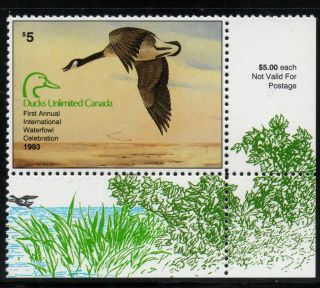 1993 Ducks Unlimited Canada Sponsor Waterfowl Duck Stamp of Year
