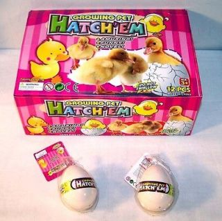 DUCK HATCHING EGGS chicken bird GROW magic trick EGG hatch toy ducks