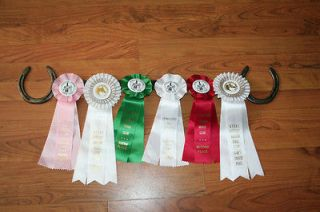 New Horse Show Ribbon Rack Holder Horse Shoes NICE