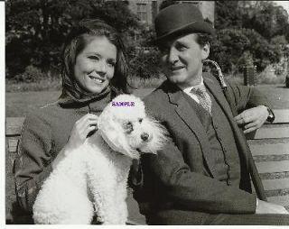 The Avengers Diana Rigg as Emma Peel Patrick Macnee as John Steed Pup