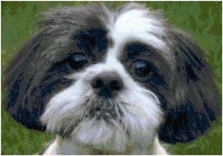 Shih Tzu Dog Counted Cross Stitch Pattern Design Chart