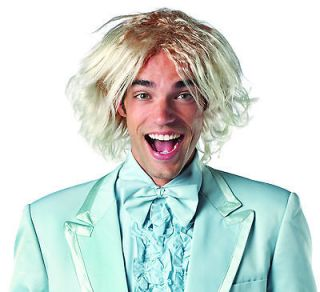 HARRY DUNNE wig Dumb and Dumber adult mens halloween costume