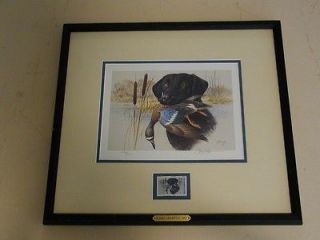 DUCKS UNLIMITED 1991 STAMP PRINT SCARCE BLACK LAB
