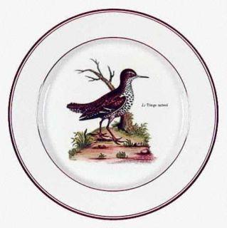 Villeroy & Boch Paradiso (Brown Trim & Band) Salad Plate, Fine China Dinnerware