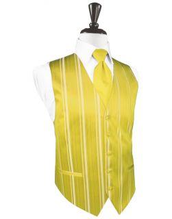 Sunbeam Striped Satin Tuxedo Vest XXL